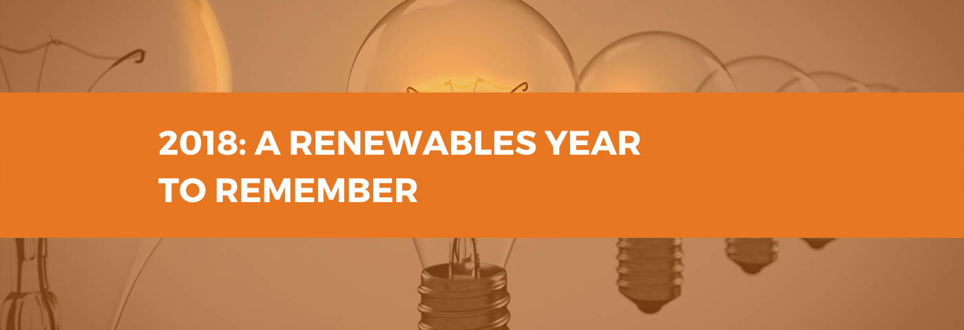 2018: A Renewables Year to Remember