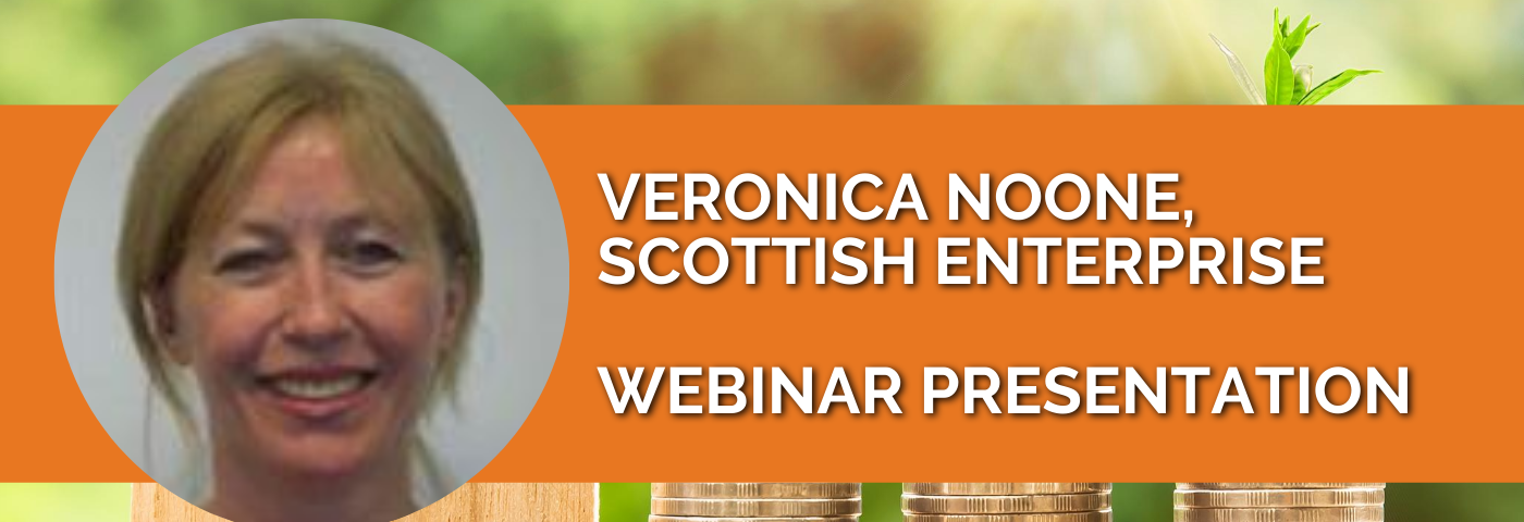 Veronica Noone: Green Investment Criteria