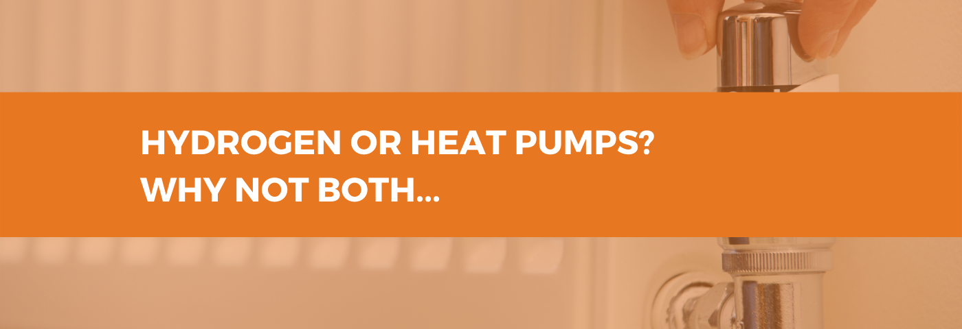 Hydrogen or heat pumps? Why not both